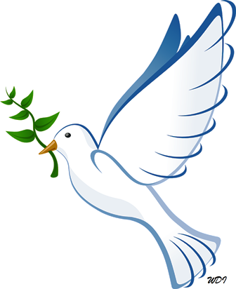 cropped-dove-41260_12800-small1.png