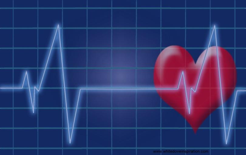 heartbeat-1892826_1280